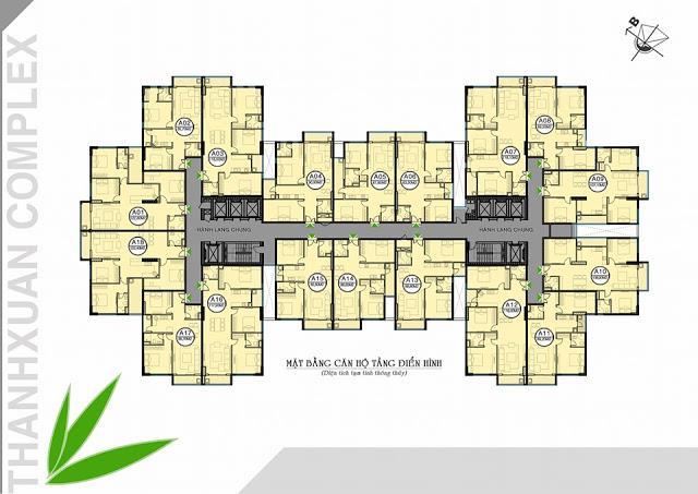 Mặt bằng tầng điển hình chung cư Thanh Xuân Complex